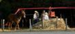 Sorghum cane pressing at the 18th annual Labor Day Festival.