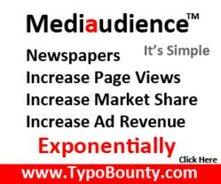 Mediaudience Makes Newspapers Money