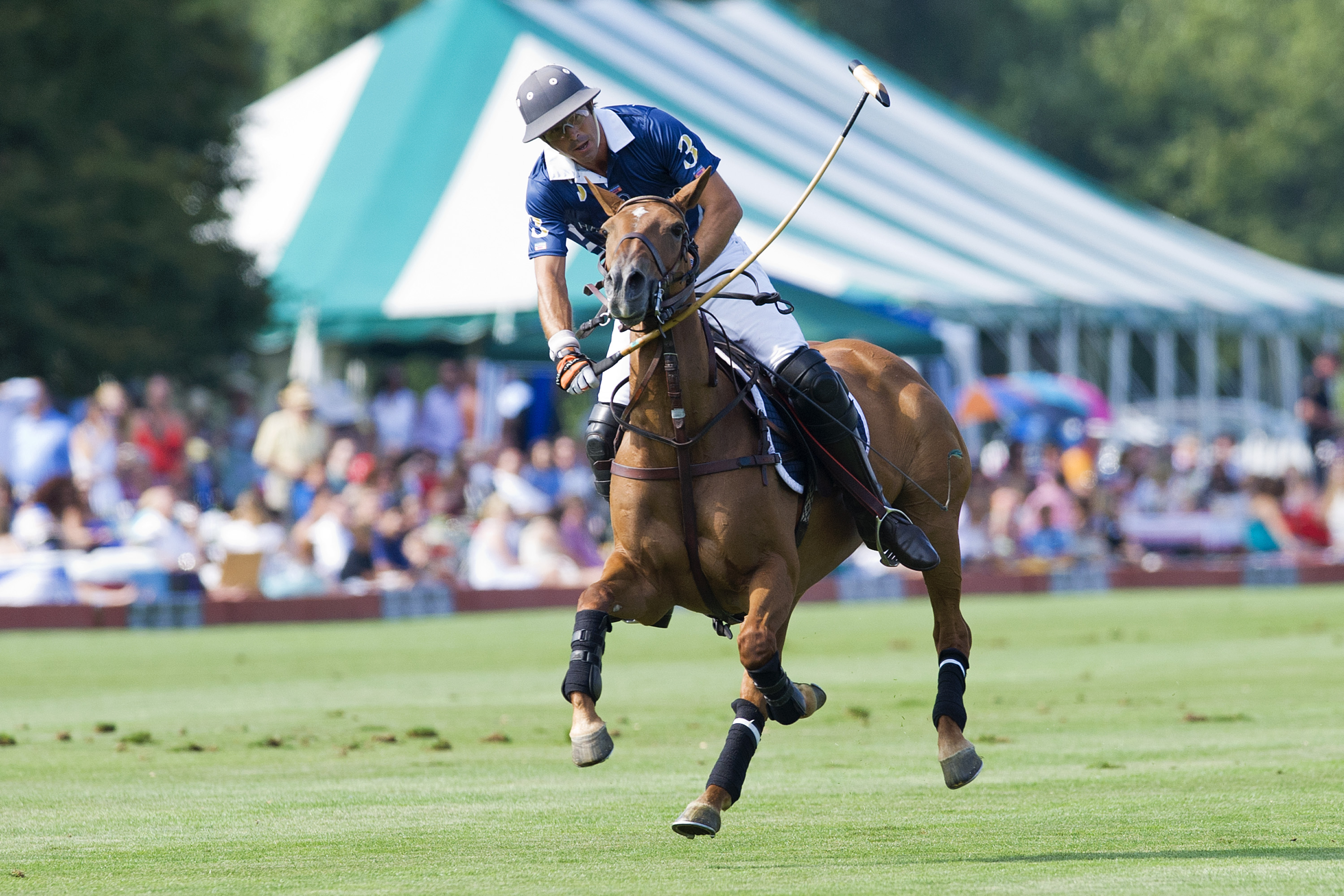 Nacho Figueras Captains Harry Winston Polo Team To Victory