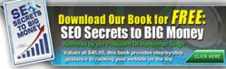 SEO Secrets to Big Money