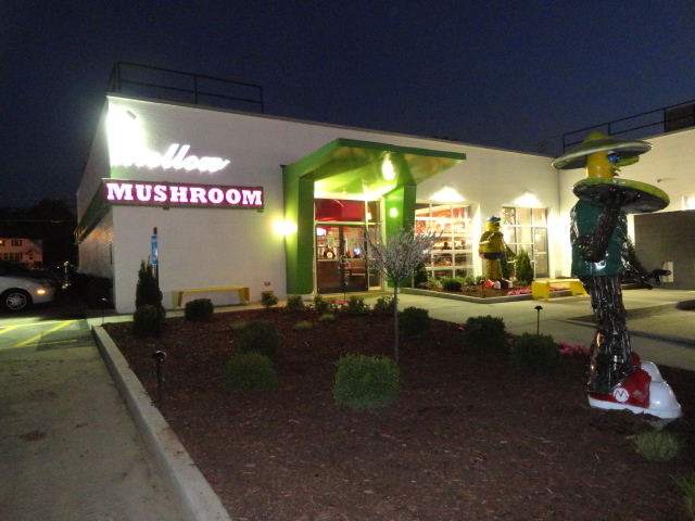 Mellow Mushroom Pizza Bakers Expands Their Unique