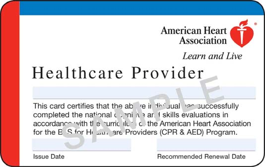 Healthcare Provider AHA CPR/BLS and &#039;Skills Check&#039;