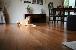 lock bamboo flooring