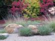 Expert Tips from Landscape Designers for a Show Stopping Fall...