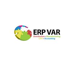 ERP consultant