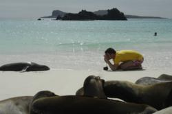 Galapagos Islands wildlife encounters