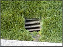Foundation Drain