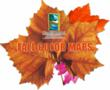 Visit Grand Rapids Posts New Maps for Fall Color Tours During...