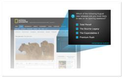 TubeMogul Brand Survey Tool What Surveys Look Like