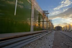 Algae Testbed Public-Private Partnership (ATP3)