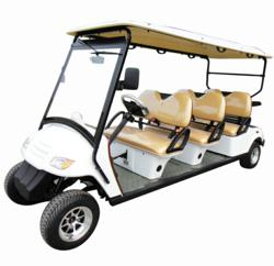 CitEcar 6 Person Street-Legal Golf Cart