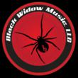 EDM BLACK WIDOW MUSIC LLC LOGO