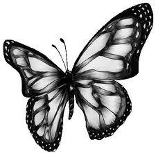 Butterfly Marketing LLC