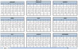 Pia Financial Analysis 2013 Year