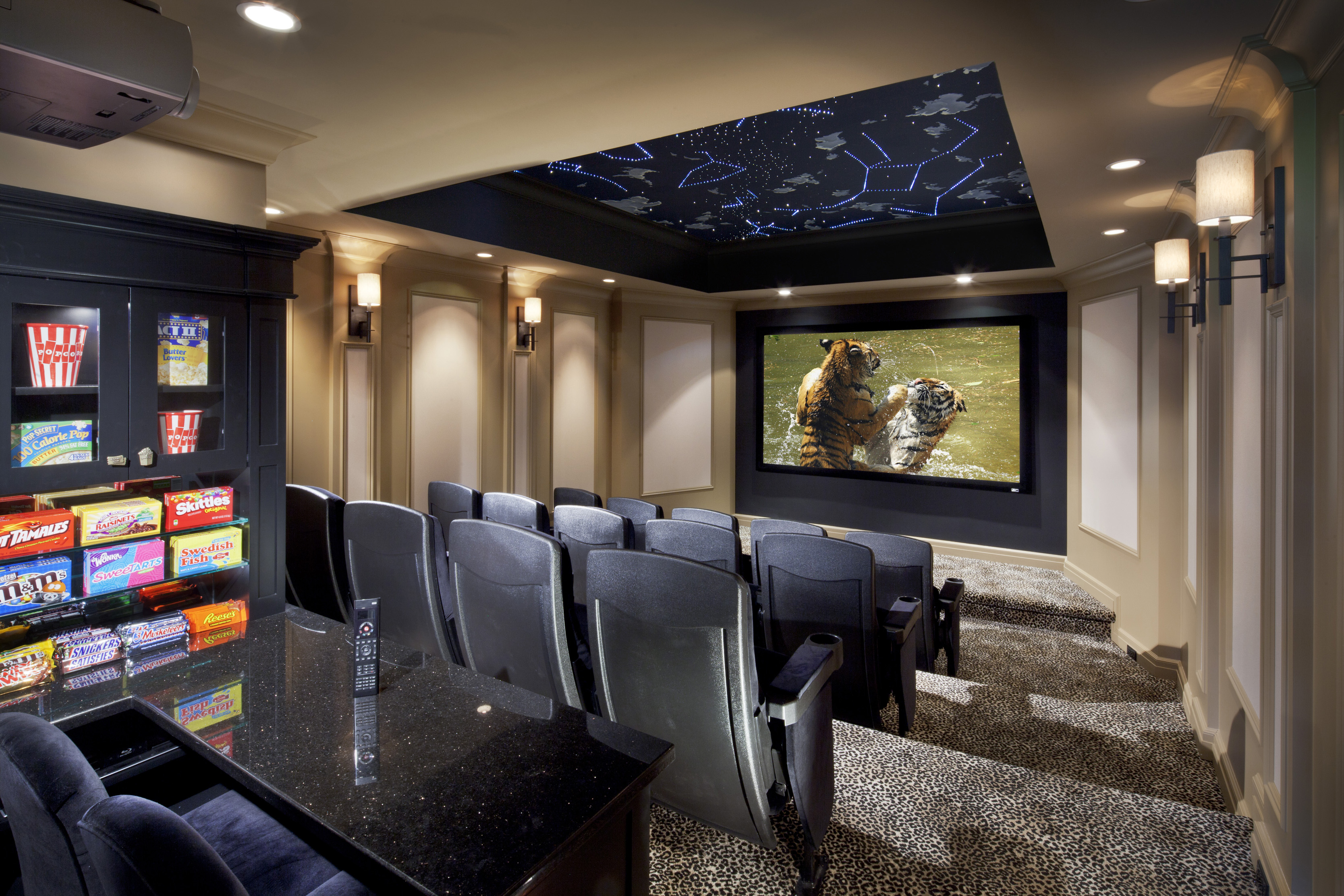 cedia 2012 best home theaterhome theater with a ceiling that reflects the evening sky - Home Theater Design Group
