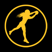 The Playmaker Icon Inspired by Troy Polamalu