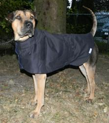 Supermodel Rescue Rue wearing navy blue Trench Coat