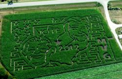 Aerial view of Meadow View Growers Vote 2012 Corn MAiZE