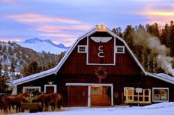 Colorado barn venue with horses.