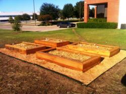 RMCN Community Garden 3.5