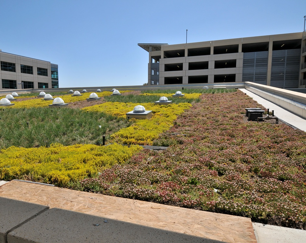 Green Roof Greens Up San Diego County Operations Center