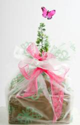 Beautifully presented food hampers