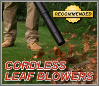 cordless leaf blower, cordless leaf blowers, best cordless leaf blower, best cordless leaf blowers