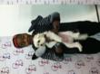 Kyle Massey gets silly with STEPS' mascot, Trevor!
