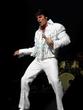 Chris MacDonald's Memories of Elvis in Concert live