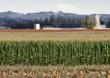 Congress Skips Town, Farmers Prepare for Return to 1949 Farm Policy