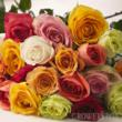 roses, bulk roses, wholesale roses, flowers for fundraisers, fundraiser flowers, wholesale flowers