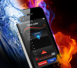 Fitpal Fitness Test Placed Ideal Exercise Intensity Between Fire And Water