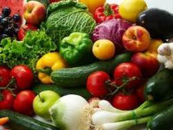 Aquaponics Teacher Organic Vegetables Training