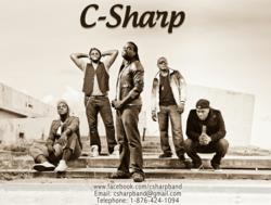 C-Sharp Photo