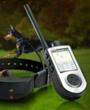 DogWirelessPlus.com provider of Wireless Dog Fence, GPS Dog Collars,...