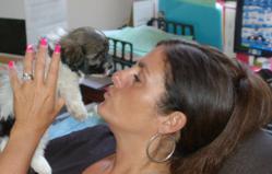 Royal Flush Havanese Owner Holly Mastroianni