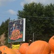 Entrance to The Great Pumpkin Farm