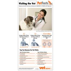 VetDepot Visiting the Vet Infographic