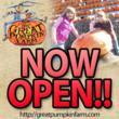 The Great Pumpkin Farm 2012
