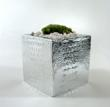 Silver Alligator Planter