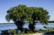 Save 25% on the Next Trip to Delavan Lake Resort