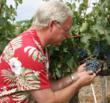 Winemaker Scott Harvey inspects some Cabernet Sauvignon