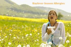Generic Allergy medicines, Allegra, Clarinex, Astelin, buy Ragweed allergy drugs, order Hay fever medications