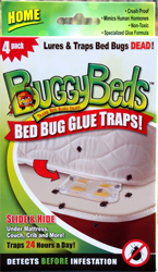 BuggyBeds Bed Bug Glue Trap