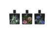 NEST Fine Fragrances Collection