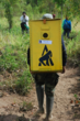 The langurs are transported to the release site in boxes carried by trained experts.