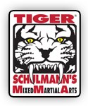 Mixed Martial Arts School