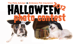 2012 Halloween pets photo contest