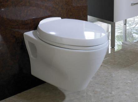 Wall Toilets – A Trendy, Space Saving Bathroom Solution
