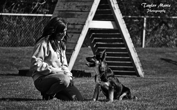 Dog Trainers Long Island New York